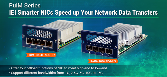 PulM NICs - network interface controller